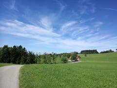 Von Wald zu Wald: Nach dem Stück durch den Anschwilerwald ist der nächste bereits zu sehen. (Bild: Marlen Hämmerli)