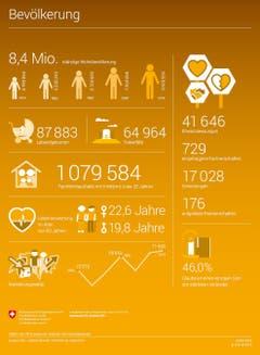 (Infografiken: Bundesamt für Statistik)