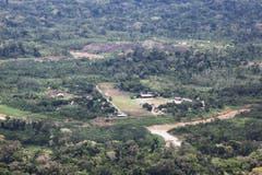 ... oder auf kleinstem Raum im Amazonasgebiet.
