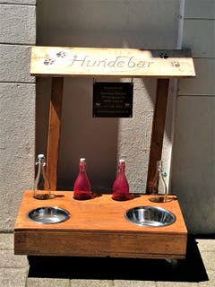 Klar ist diese Hundebar vor dem Bistro Meggenhorn eine gute Idee ! Das bringt im Moment leider gar nichts, ich bin durstig und auch ohne Hund unterwegs. Bild: Margrith Imhof-Röthlin