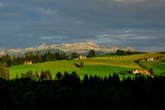 Der Alpstein von Schwellbrunn aus. (Bild: Luciano Pau)