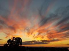 Der Himmel brennt. Aufnahme vom Rorschacherberg Richtung Westen, abends um 21.45 Uhr. (Bild: Bernhard Hauser)