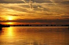 Ein Sonnenuntergang wie flüssiges Gold im Rheindelta (Bild: Toni Sieber)