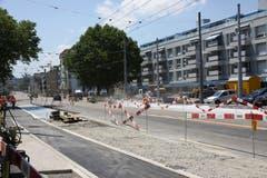 Die Haltestellen werden grosszügiger, als sie bisher waren. Dem Projekt fielen in Fahrtrichtung stadteinwärts einzelne Bäume zum Opfer. Sie werden durch Neupflanzungen ersetzt. (Bild: Reto Voneschen)