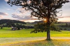 Sonnenuntergang in Kirchberg - Aufnahme der Sonne als Blendenstern (Bild: Marc Bollhalder)