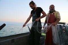 Berufsfischer Timon Görtz mit seinem Vater bei der Arbeit. Die Ausbeute ist in den vergangenen Jahren weniger geworden. (Bilder: Martin Rechsteiner)