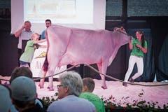 Jasmin Küchler (rechts) aus Obwalden hievt eine Brown Swiss zur Auktion auf die Bühne. (Bild: Ralph Ribi)