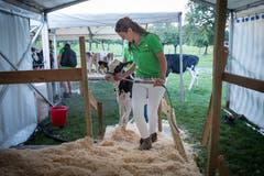 Jasmin Küchler reiste aus Obwalden an, um bei der Tierbetreuung und Präsentation mitzuhelfen. (Bild: Ralph Ribi)