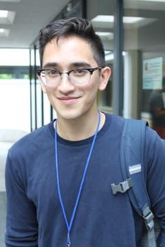 Der 19-jährige David Noble spielt Viola und macht beim Borromeo-Musikfestival mit.