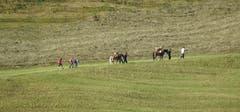 Die Säumer sind wieder unterwegs, so gesehen in Engelberg. (Bild: Kurt Hägi)