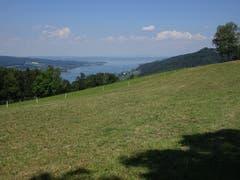 Panoramblick auf den Untersee kurz vor der Hochwacht oberhalb Klingenzell/Eschenz (Bild: Hubert Koch)