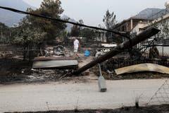 Ein Mann sucht nach seinen Habseligkeiten in Kineta (AP Photo/Yorgos Karahalis, 24. Juli 2018)