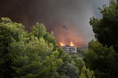 Die Flammen wüten in einem dicht bewaldeten Gebiet. (Bild: EPA/ Alexandros Vlachos (23. Juli 2018))