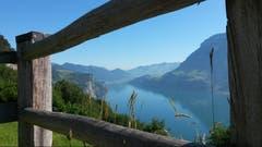 Nach dem Aufstieg zur Bärchi im Isenthal wird man mit dieser traumhaften Aussicht belohnt. (Bild: Barbara Infanger, 20. Juni 2018)