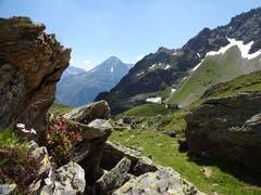Blick vom Obersee Richtung Leutschachhütte. (Bild: Hans Truttmann, 18. Juli 2018)