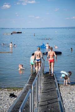 In Ufernähe beträgt die Wassertemperatur bis zu 29 Grad. (Bild: Ralph Ribi)