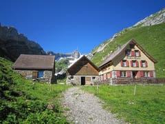 Der Messmer im Alpstein (Bild: Toni Sieber)