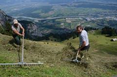 Schon als kleine Buben haben Ruedi (links) und Ueli Bühler mitgeholfen.