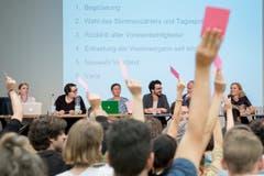 Neuwahl des Südpol-Vorstandes anlässlich der Mitgliederversammlung im Südpol in Kriens. (Bild: Pius Amrein (Luzern, 5. Juli 2018))