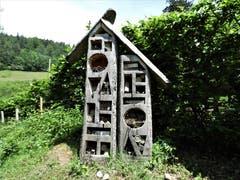 Hier im Eigenthal war bestimmt ein grosser Insekten-Liebhaber an diesem wunderschönen, feudalen «Insektenhotel» am Werk. (Bild: Margrith Imhof-Röthlin)