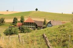 Berner Bauernhaus am Schlossberg. (Bild: Irene Wanner)