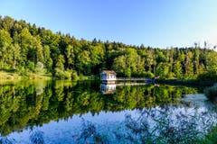 Die Ruhe am Wenigerweiher. (Bild: Luciano Pau)