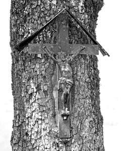 Wegkreuz an einem Baum im Buochser Bauernland lädt zum Innehalten ein. (Bild: Bruno Schuler (Buochs, 2. August 2018))