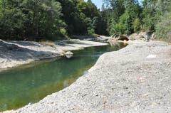 Hinter dem Wehr in der Bazenheider Mühlau staut sich das Wasser und bildet so eine Möglichkeit zum Baden. (Bild: Sabine Schmid)