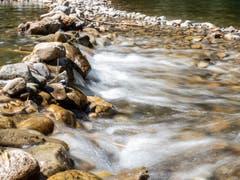 Beim Äuli in Lichtensteig gewinnt der bereits schon beachtliche Fluss bei einer natürlichen Schwelle an Fahrt. (Bild: Sascha Erni)