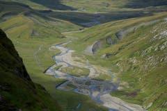 Blick in die unberührte Flusslandschaft in der Greinaebene (Bild: Hans Aeschlimann)