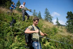 Jeremias «Mi» Achermann hilft auf der Alp aus, wenn Not am Mann ist. Normalerweise kümmert er sich um den Talbetrieb. Bild: Corinne Glanzmann (Flühli, 08. August 2018)