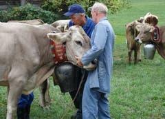 Am Ziel: Die Kuh wird von der Treichel «erlöst».