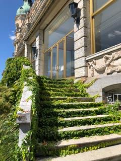 Das Hotel Palace in Luzern ist geschlossen – die Efeuranken breiten sich aus. (Bild: Marianne Schmidt, 26. August 2018)