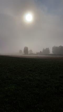 Erstes Herbstwochenende in Zezikon. (Bild: Stephan Lendi)