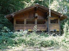 Die Zuchtstation des Werdenberger Bienenzüchtervereins im Valcup, oberhalb von Räfis, liegt mitten im Wald. (Bild: Bilder: Hanspeter Thurnherr)