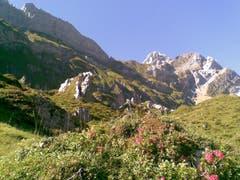 Alpkreuz im Aufstieg zum Rotsteinpass. (Bild: Klaus Businger)