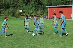 Neben den technischen Übungen wird das Zusammenspiel in Matchsituationen trainiert. In dieser Einheit sollen die Pässe an die Mitspieler rasch gespielt und der Ball flach gehalten werden. (Bild: Robert Kucera)