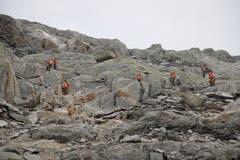 Die 28 Soldaten durchforsten akribisch das steile Gelände. (Bild: Philipp Zurfluh, Realp, 9. August 2018)