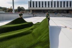Schon am 28. September soll auf diesem Rasen das erste Spiel stattfinden: Ein sportliches Ziel, das nur bei schönem Wetter erreicht werden kann. (Bild: Nadia Schärli, Kriens, 10. September 2018)