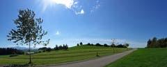 Inspirierender Spaziergang oberhalb von Abtwil. (Bild: Walter Schmidt)