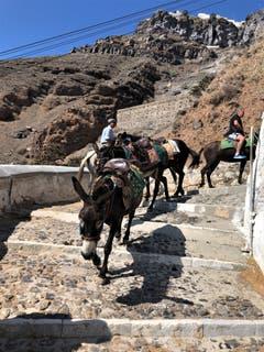 """Auf der Insel Santorini gibt es viele Möglichkeiten auf den Berg zu gelangen, mit der Bahn, auf dem Rücken der Esel oder zu Fuss, die Umgebung ist so wunderschön und deshalb ist es ein «Muss""""»! (Bild: Margrith Imhof-Röthlin, 14. September 2018)"""