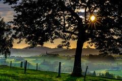 Sonnenaufgang bei Hinterhof, Herisau. (Bild: Luciano Pau)