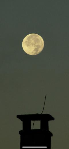 Der Mond geht unter. (Bild: Harald Hentschel (Rothenburg, 26. September 2018))