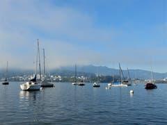 Was lange währt wird endlich gut, überall scheint nun die Sonne und das ist gut ! Aufgenommen beim Churchill-Quai, Luzern. (Bild: Margrith Imhof-Röthlin (Luzern, 27. September 2018))