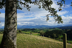 Spätsommerabend auf dem Wellberg ob Grosswangen. (Bild: Isidor Rösch (Grosswangen, 23. September 2018))