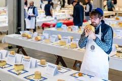 Nach 29 Testobjekten hat unser Reporter fürs Erste genug von Käse. (Bild: Philipp Schmidli, 28. September 2018)