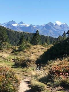 Aussicht auf die Innerschweizer Berge. (Bild: Fredi Meyer (Fürstein, 27. September 2018))