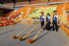 In Bürlimoos fand wieder die grösste Kürbisausstellung der Schweiz statt mit einzigartigen Exemplaren und Folklore. (Bild: Xaver Husmann (Rothenburg, 30. September 2018))