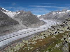 Wunderschöner Aletschgletscher. Aufnahme auf der Moosfluh beim Gletscherblick. (Bild: Bruno Ringgenberg, 8. September 2018)