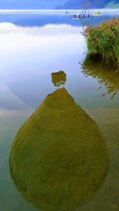 Was im Aegerisee so alles schwimmt?! (Bild: Priska Arnold, 9. September 2018)